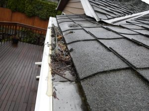 Gutter protection failure