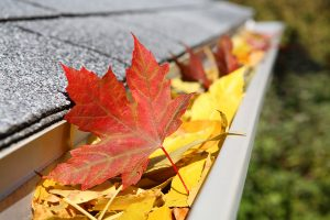 gutter clogged with leaves