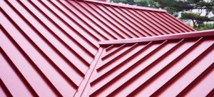 Advantages and Disadvantages of Standing Seam Metal Roofs
