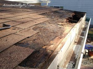 leaking porch roof